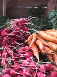 radish_carrots-small