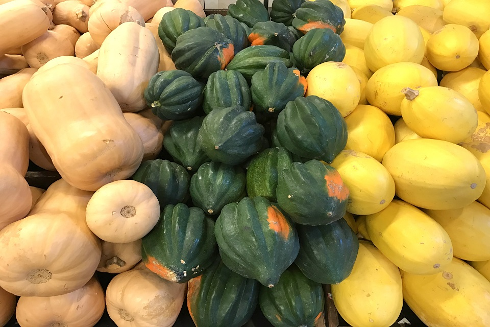 Collection of butternut, acorn and spaghetti squash