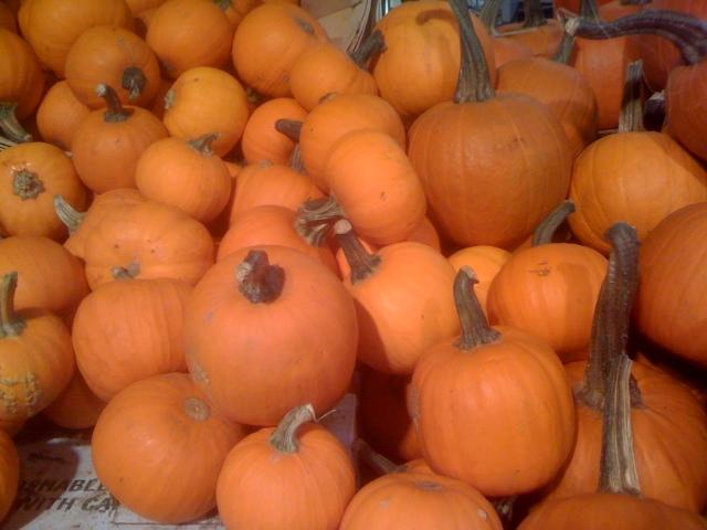 Kidney Diet Tips Pumpkin And Kidney Diets Kidney Diet Tips